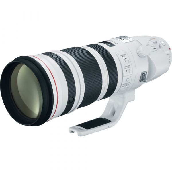 Rental: Canon EF 200-400mm f/4 L IS USM With Lens Extender 1.4x