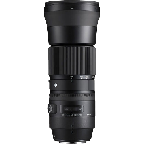 Sigma 150-600mm f/5-6.3 DG OS HSM Contemporary Lens and TC-1401 1.4x Teleconverter Kit (Canon EF)