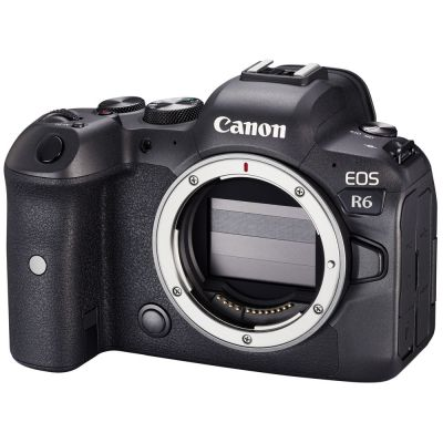 Rental: Canon EOS R6 Mirrorless Camera Body