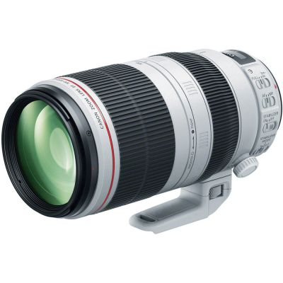 Rental: Canon EF 100-400mm f/4.5-5.6 L IS II USM Lens