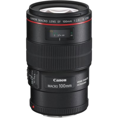 Rental: Canon EF 100mm f/2.8 L IS USM Macro Lens