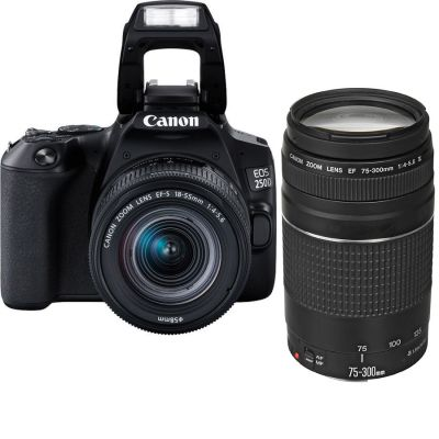 Canon EOS 250D DSLR Double Lens Kit