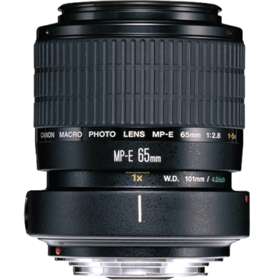 Canon MP-E 65mm f/2.8 (1-5x) Macro Lens